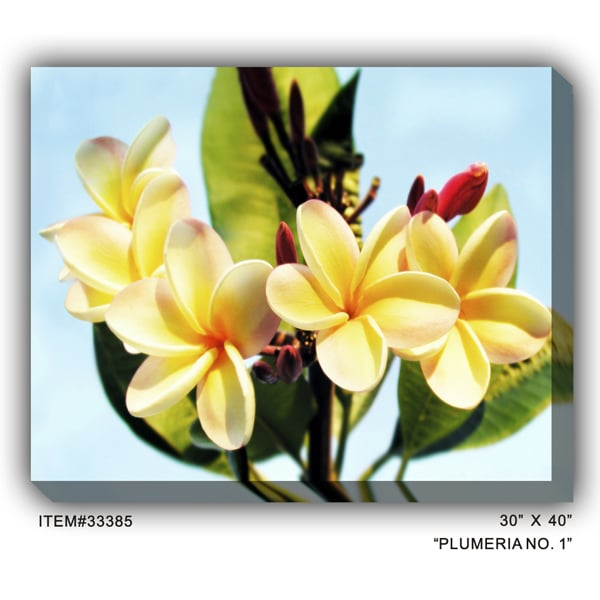 33385 Plumeria Outdoor Wall Art - Free Shipping