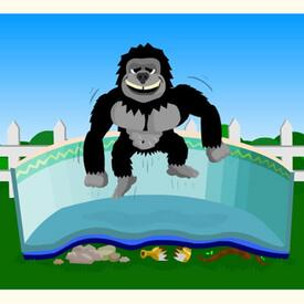 Gorilla Floor Padding Round Pools by Family Leisure