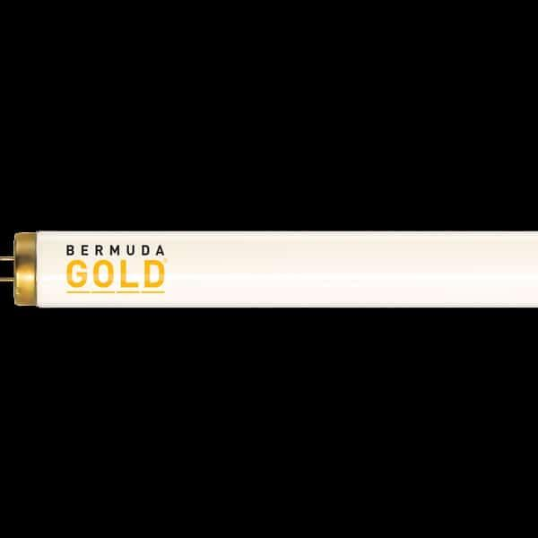 Bermuda Gold Premium FR71 160W Replacement Tanning Bulb by JK-Light