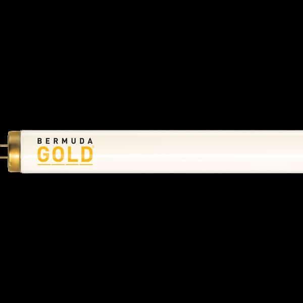 Bermuda Gold Premium Plus Replacement Tanning Bulb by JK-Light