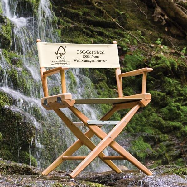 World Famous Directors Chair by Telescope Casual