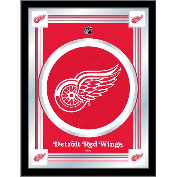 Detroit Red Wings Logo Mirror 17x22 W Official Nhl Logo Family